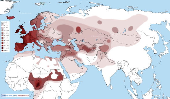 World modern distribution of R1b Y-DNA