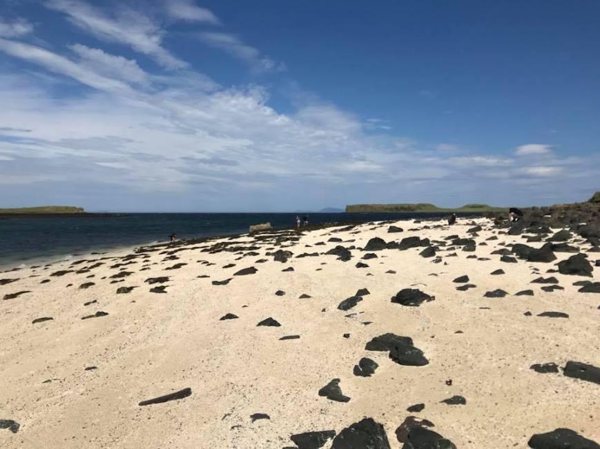 Coral Beaches